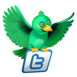 Suivez E-dilic sur Twitter